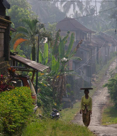 Ethical Experiences in Bali