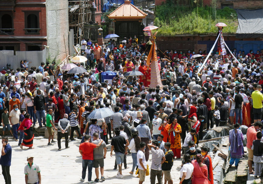 Festival of Cows, Nepal