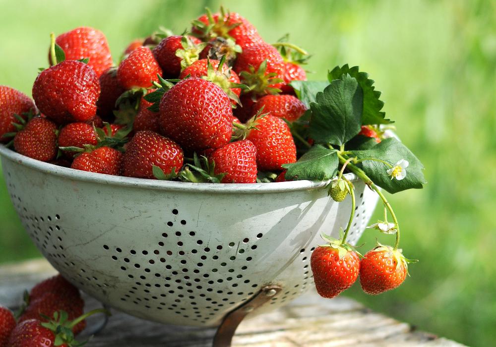 Strawberries Japan