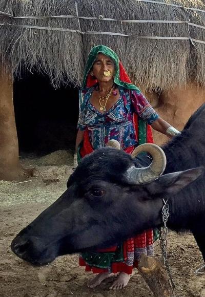 India – Rural jeep Drive