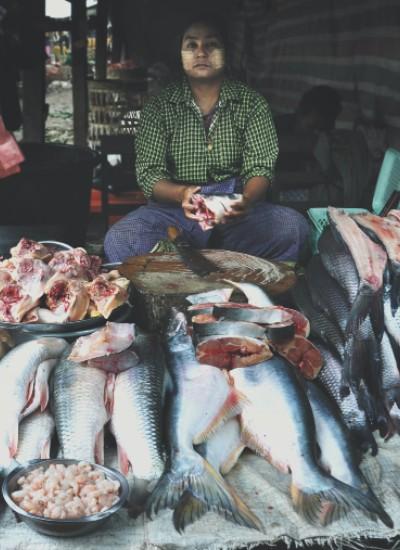 Myanmar – Fish Curry Recipe
